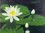 Canvas & Wine Night!  Water Lily!  9/8/16