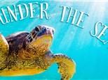 Under the Sea: Summer Workshops - July 23-27