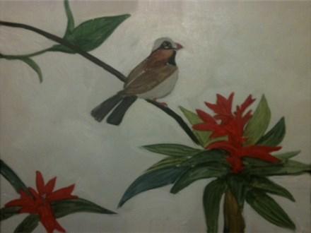 Bromelaid Bird