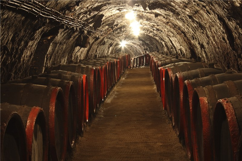 Nefarious Cellars