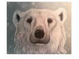 Youth Class - Polar Bear - Mar. 14th