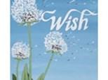 Adult Canvas Night Oct 15th Wish