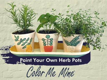 Herb Pots Adult Class - May 20, 2021