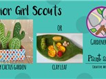 Girl Scouts - Juniors