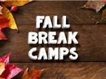 Holiday Camp: November 22nd, Afternoon Camp 2017