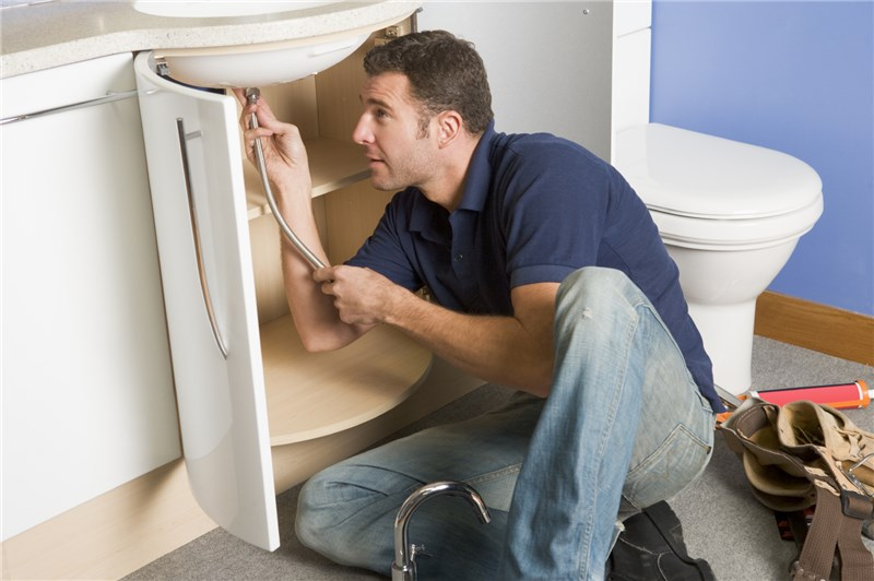 Handyman Plus Home Repairs Bellevue