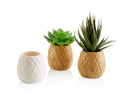 Pottery To Go Pineapple Planter