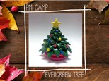 Evergreen Tree Camp: November 21st, Afternoon Camp 2018