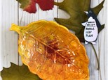 NOVEMBER ART CLUB Week 2: Bubble Leaf Plate