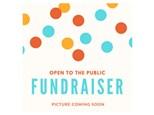 Public FUNdraiser for Blue Springs DAR Chapter - Nov 16