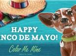 Cinco de Mayo Party - May 5, 2018