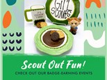 SCOUT JUNIOR BADGE PACKAGE