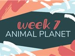 Summer Camp Week 7: ANIMAL PLANET (July 15th - 19th)
