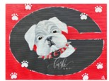 UGA Pup Paint Class - Perry