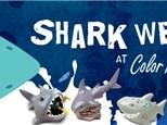 Kids Night Out: Shark Week - July 21