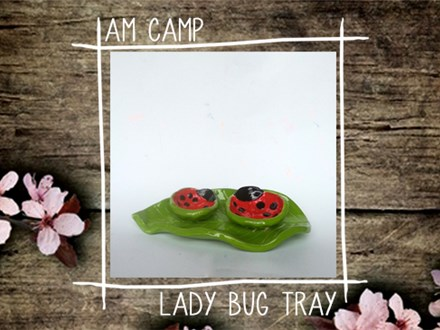 Ladybug Tray Camp: Monday, March 25th, Morning Camp 2019