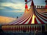 Summer Camp - Circus!  July 2-6