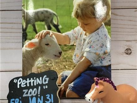 Pre-K Storytime: Petting Zoo