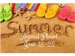 Summer Art Camp Deposit June 18-22
