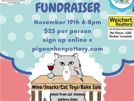 Meow Mission Fundraiser