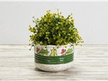 """"""" Holiday Planter""""To-Go Kit-at Color Me Mine - Aspen"""