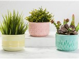 """"""" Textured Planter""""To-Go Kit-at Color Me Mine - Aspen"""