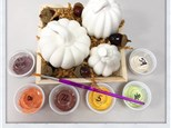 Pumpkin Trio - Take home or Paint in Store by Appointment
