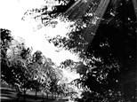 """Canvas Night """"Polaroid Landscape"""" Saturday, November 5th 7-10pm"""