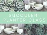 Paint a Succulent Planter