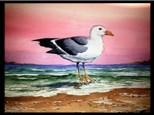 08/13 Watercolor: Texas Seagull 6:30 PM $45