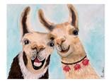 Llamas Paint Class