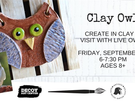 Clay Owl with the Raptor Center