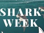 Shark Week - K thru 5th Grade