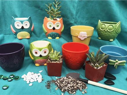 Little Green Thumb Parties at Clay 'N Latte! | Custom Succulent Planting Experience for Kids