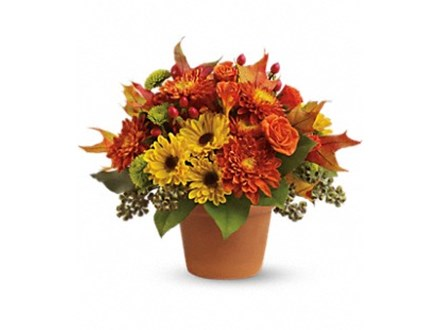 Flower Arranging - Nov. 22nd