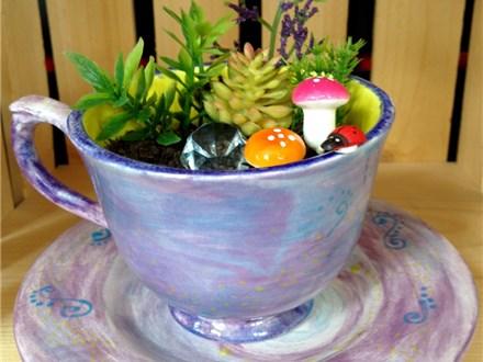 Mini fairy garden (Aug 4th)