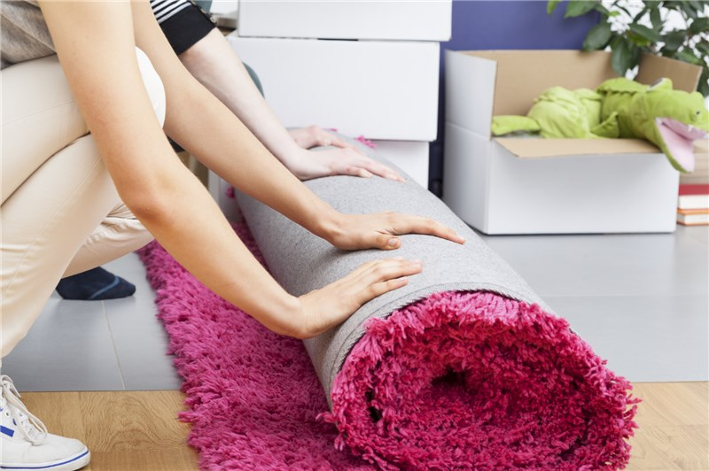 NYC healthy choice Carpet Cleaners