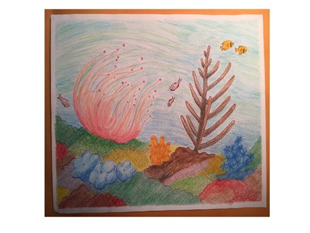 Youth Class - Coral Reef - Jan. 31st